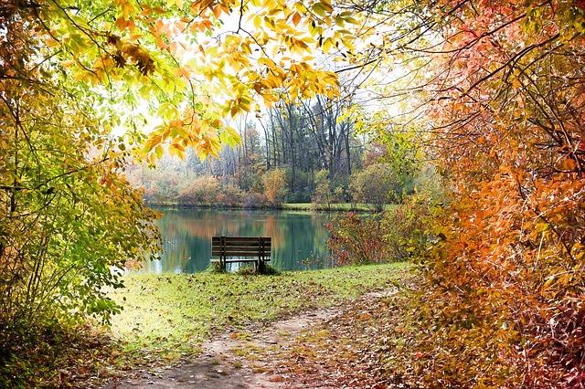 Осень на польском языке