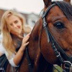 Пословицы и фразеологизмы о лошадях на польском языке