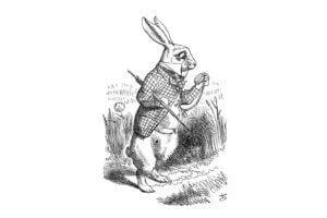 Алиса в стране чудес на польском языке, чтение 1 главы
