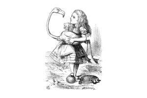 Алиса в стране чудес на польском языке, чтение 8 главы + разбор